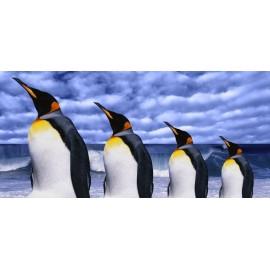 Óriáskép, Extra kép,Pingvinek 100x212
