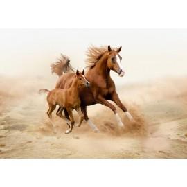 Óriáskép, Extra kép, ló kicsinyével 100x143