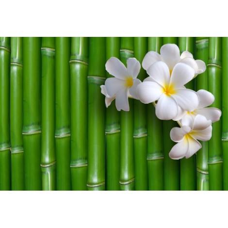 Óriáskép, Extra kép, Bambusz virág 100x148